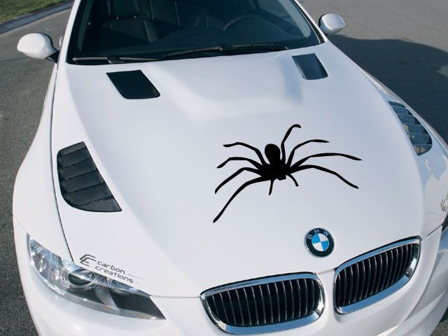 Best Hood Vinyl Graphics Decals Images On Pinterest Bumper - Best automobile graphics and patternsbest stickers on the car hood images on pinterest cars hoods