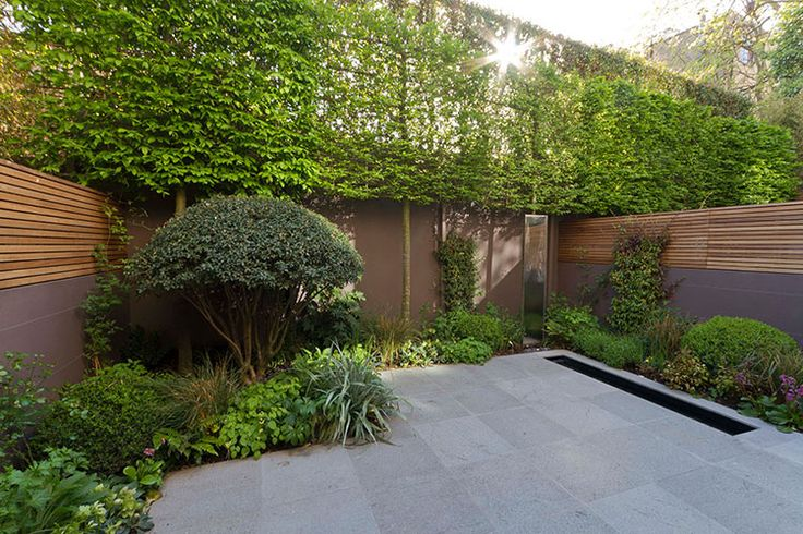 slate grey wall with horizontal wooden fence panels    The List - House and Garden