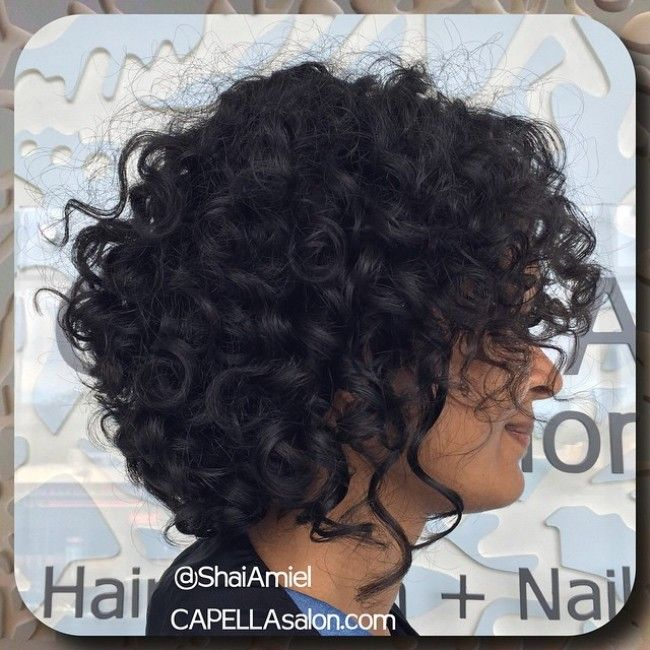 shai amiel short curly haircut bob 650x650