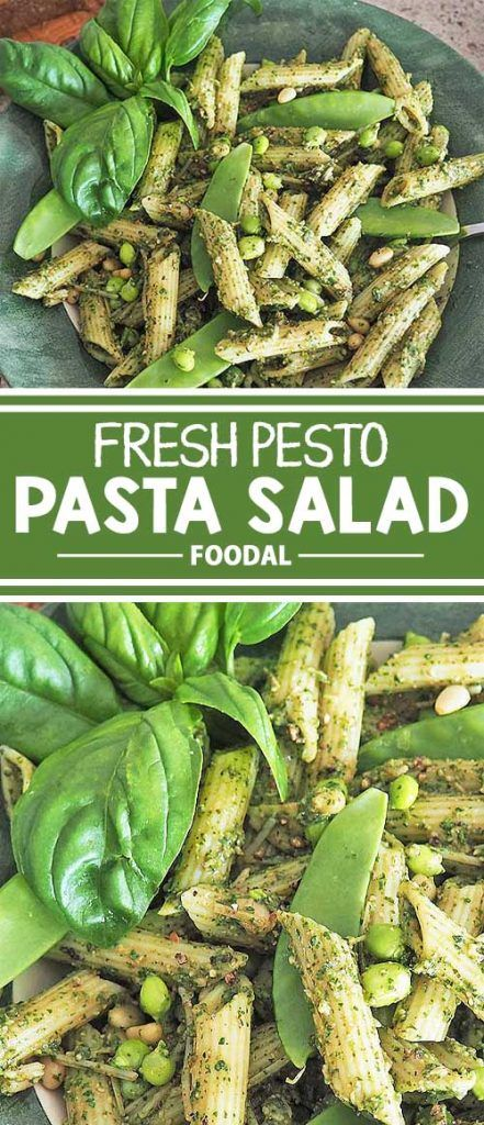 Essential summer fare for picnics, backyard entertaining, or simply as a refreshing lunch, this pesto pasta salad delivers the taste of sunny goodness. Infused with the incomparable flavors of homemade pesto, fresh green peas, leafy spinach, and Parmesan cheese, it's rich in nutrients, too! We've got all the delicious details right here on Foodal.
