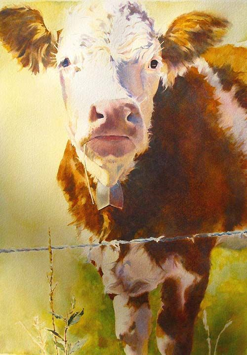 Judy Betts    Watercolor
