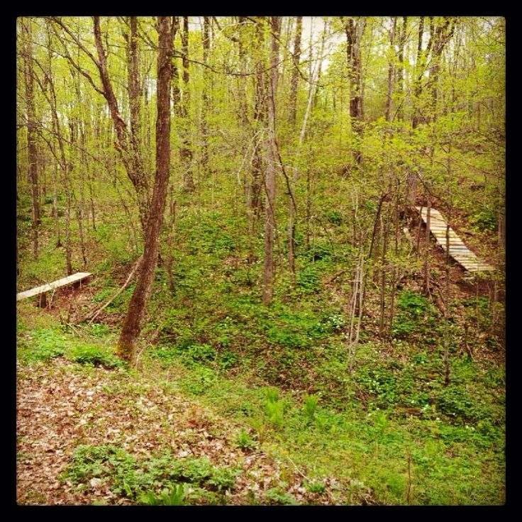 Snakes and Ladders! Come try our sweet #singletrack #mtb trails at #HardwoodSkiandBike!