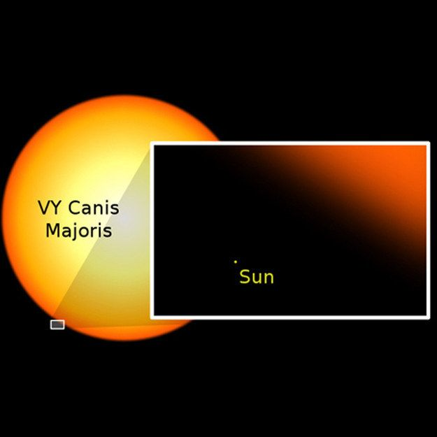 Which means that there are ones much, much bigger than little wimpy sun. Just look at how tiny and insignificant our sun is: | 26 Pictures Will Make You Re-Evaluate Your Entire Existence
