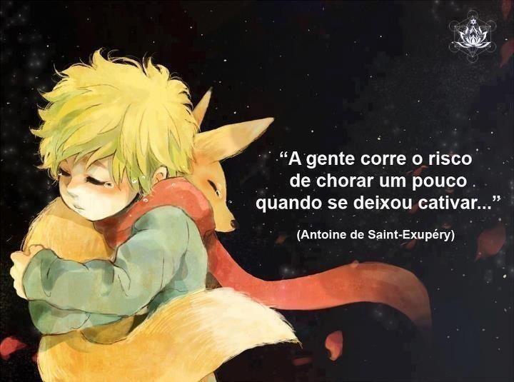 a gente corre o risco de chorar um pouco quando se deixou cativar... Antoine De Saint-Exupery