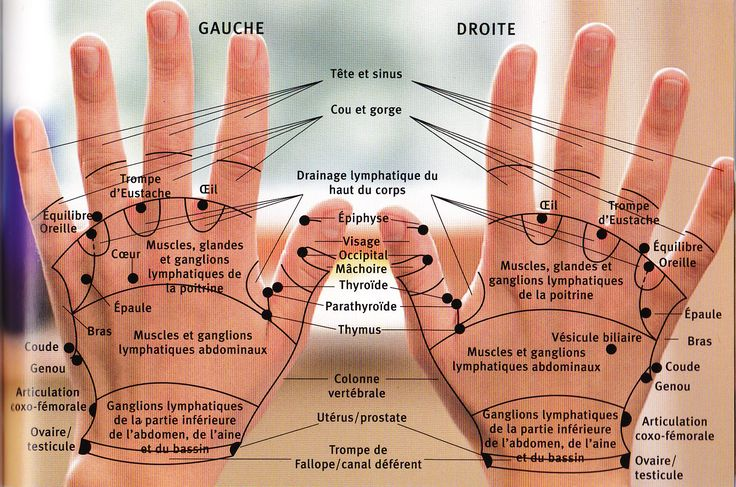 Les mains  digitopuncture 1