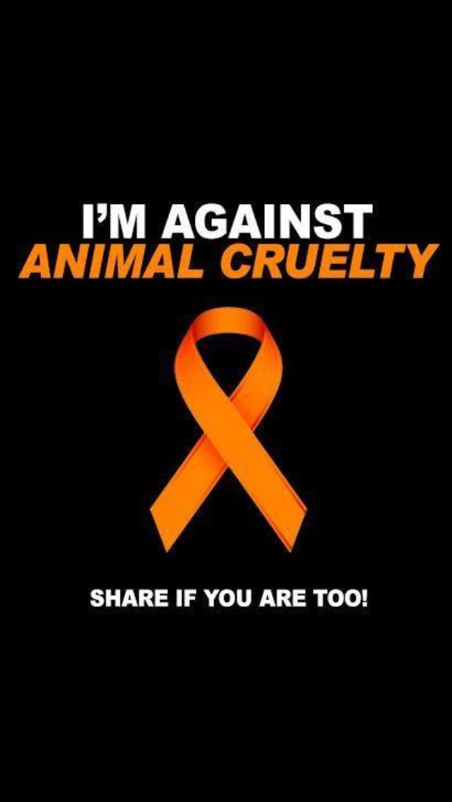 Yes I Am!!!! Funny how this is the color for MS and animal cruelty.  I fight MS within and I fight animal cruelty without!