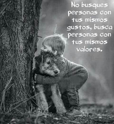 #Frases                                                                                                                                                                                 Más