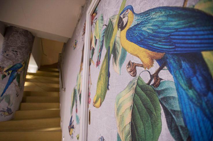 wallpaper#colors#exoticstyle#LondonArt#wall#decoration#brasilianrestaurant#interior#design#dlastudio#architetti#genova