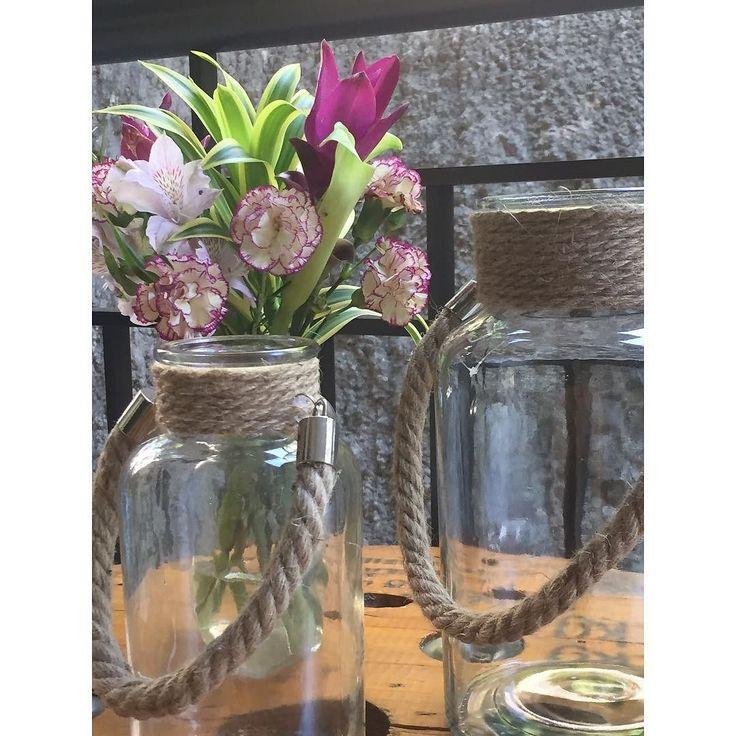 _florindo as segundas-feiras.  #studiopinoos #pinoosinspira