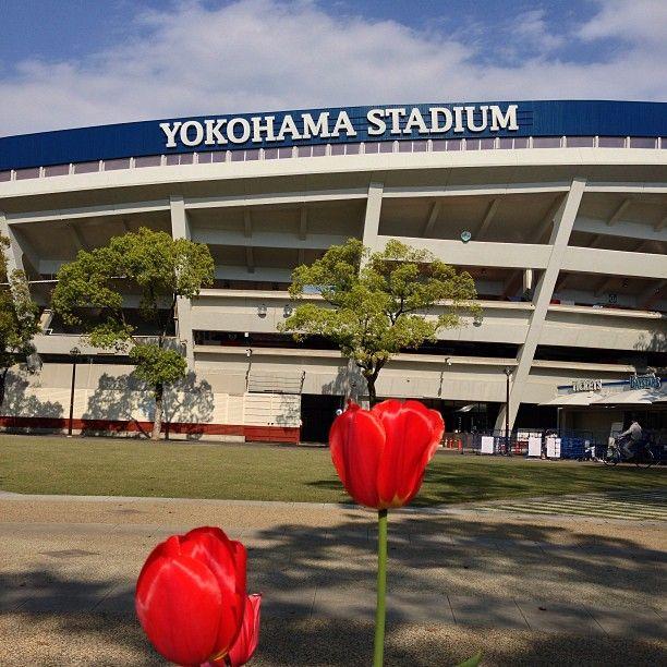 横浜スタジアム (YOKOHAMA STADIUM) in 横浜市, 神奈川県