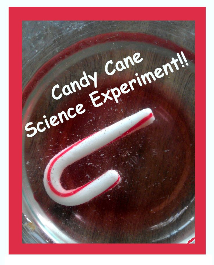 #Candy Cane #Science #Experiment PreK & older!!
