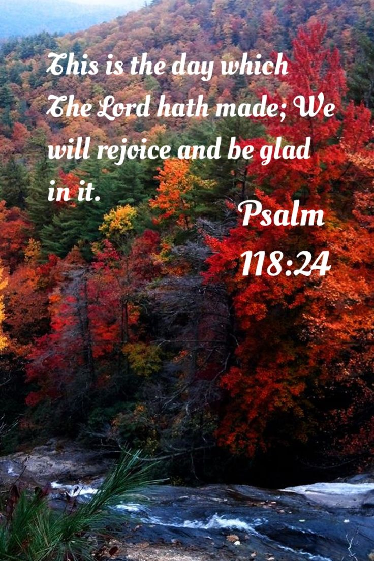 This is the day which the Lord hath made; will rejoice and be glad in it. ~ Psalm 118:24 KJV