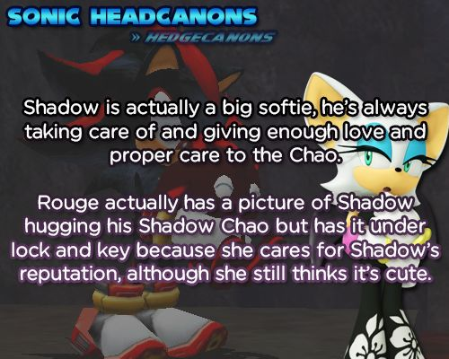 Shadow is actually a big softie, he's always taking care of and giving enough love and proper care to the Chao. Rouge actually has a picture of Shadow hugging his Shadow Chao but has it under lock and key because she cares for Shadow's reputation, although she still thinks it's cute.