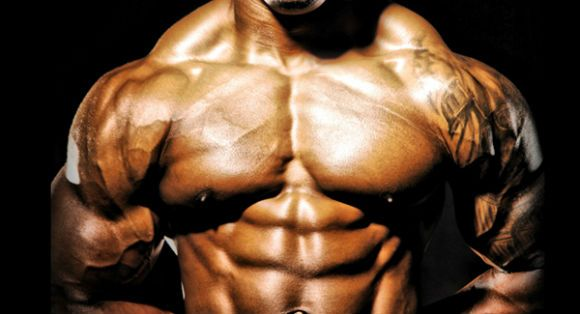 It's bulking season! Find out the Top 10 Foods for Bulking in this article! Gain weight and muscle mass by following our hardgainers guide.