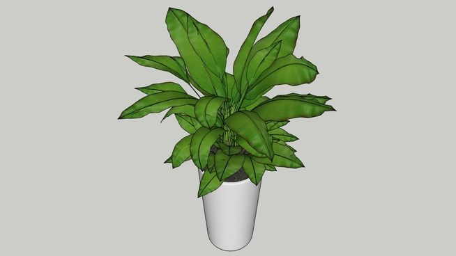 Large preview of 3D Model of Pot Plant