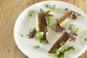Seafood dish from Oliver Stephens at Priory Bay Hotel