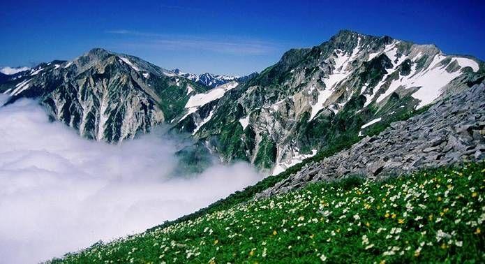北アルプス 白馬岳と高山植物