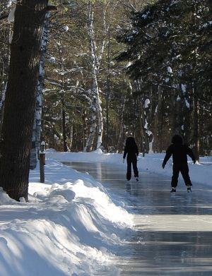 Skating through the woods at Arrowhead Provincial Park