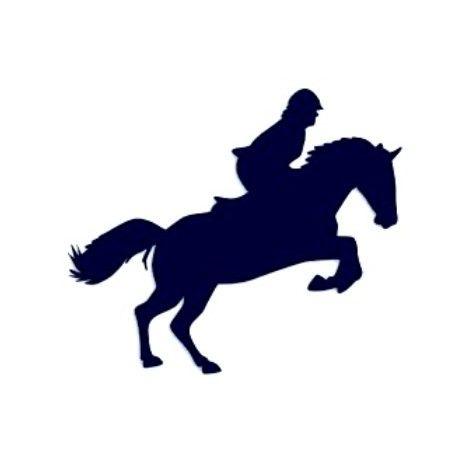 Samolepka na auto-jízda na koni