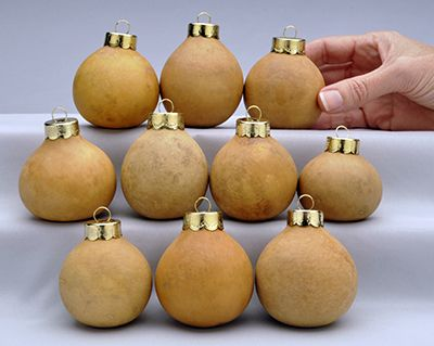 Pack of 10 Large Gourd Ornaments & 783 best Gourds images on Pinterest | Painted gourds Gourd art and ...