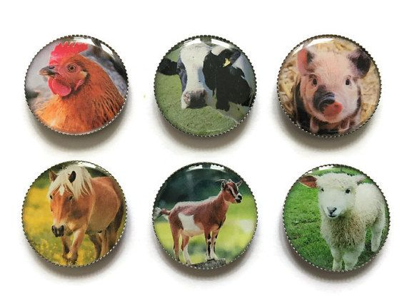 Farm animals magnets, animal magnets, horse magnet, chicken magnet, pig magnet, cow magnet, goat magnet, sheep magnet