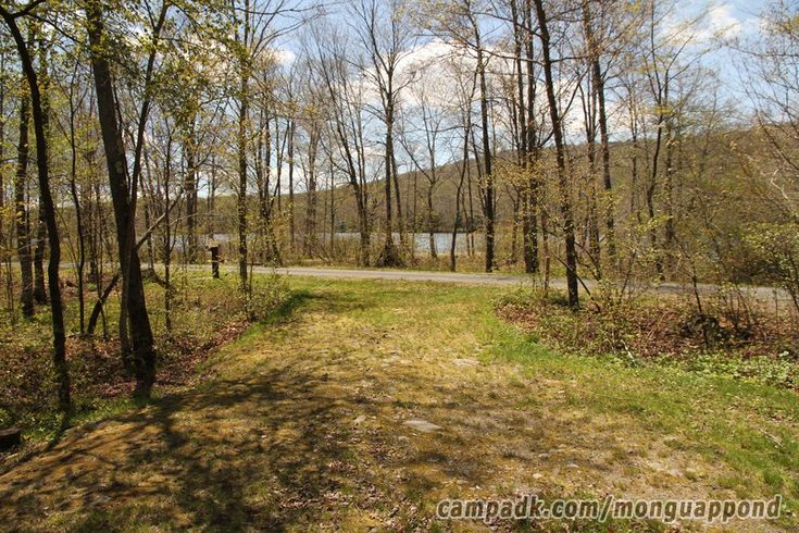 Campsite Photo of Site 125 at Mongaup Pond, New York - Looking Back Towards Road