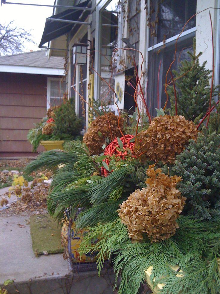 Winter Windowboxes, Dryed Hydrangea, Spruce tips, Rose Hips, Incense Cedar, Garden Design, www.sarahscottagecreation.com