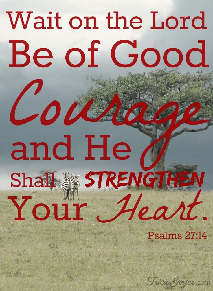 """""""Wait on the Lord, Be of Good courage and He shall strengthen your heart."""" Psalms 27:14 - TriciaGoyer.com"""