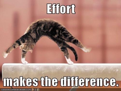 Growth Mindset Memes: English: Effort makes the difference.