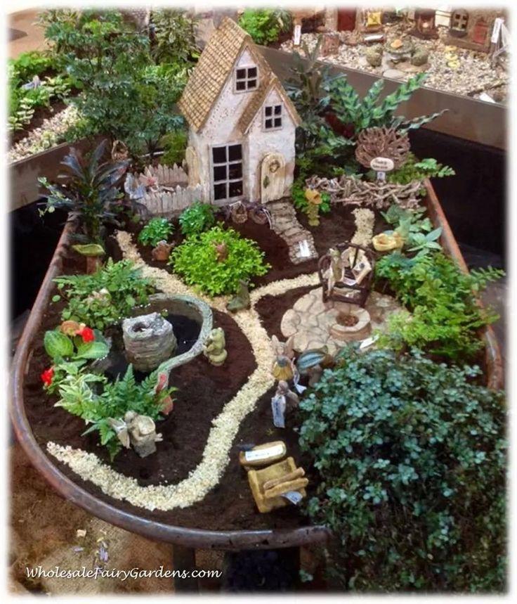 Attractive Fairy Garden Plants