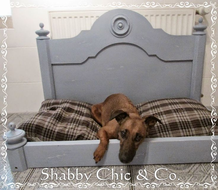 die besten 25 hundebett paletten ideen auf pinterest rustikale katzenm bel selbstgemachtes. Black Bedroom Furniture Sets. Home Design Ideas
