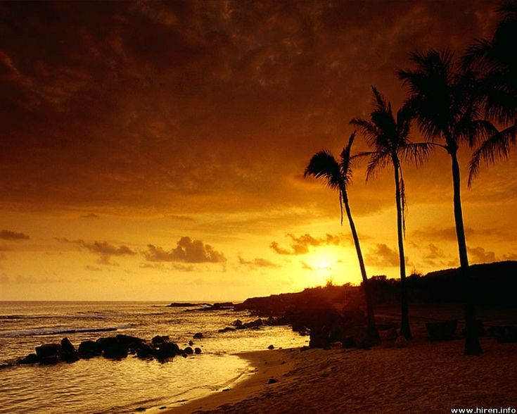 hawaii pictures - Google Search