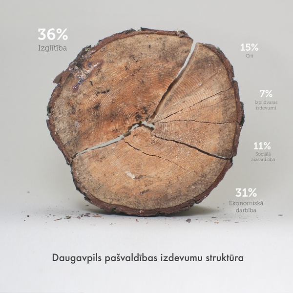 Real Infographic | Juris Stūrainis - Municipal expense. Clever use of cracks in the wood dividing up the graph.
