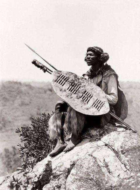 Africa | Ben Mdiliza, Shangaan warrior, Thabina, Limpopo. South Africa. Early 1900s | ©Alfred Duggan-Cronin / McGregor Museum
