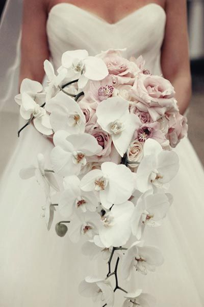 Cascading orchids add modern drama to this pale pink rose bouquet.