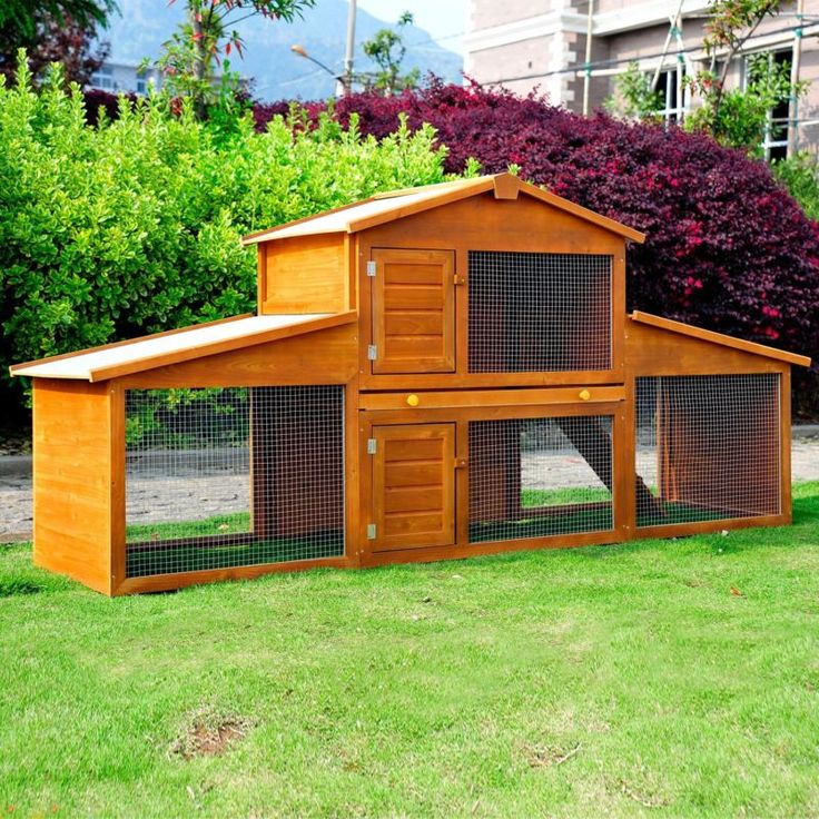 25 best ideas about guinea pig house on pinterest cages for Outdoor rabbit enclosure ideas
