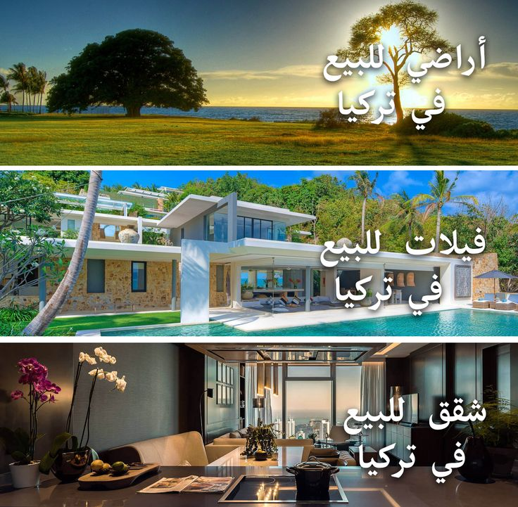 الأراضي والفلل والشقق والتجارية للبيع في تركيا!   https://www.rimallinvest.com/single-post/2017/08/03/Lands-villas-apartments-and-commercials-for-sale-in-Turkey-   #rimallinvest #propertiesinturkey #investinturkey #turkeyrealestate #landsinturkey #apartmentinturkey #propertyinturkey    Properties For Sale in Turkey | Rimall Invest | www.rimallinvest.com | +90 212 777 77 66