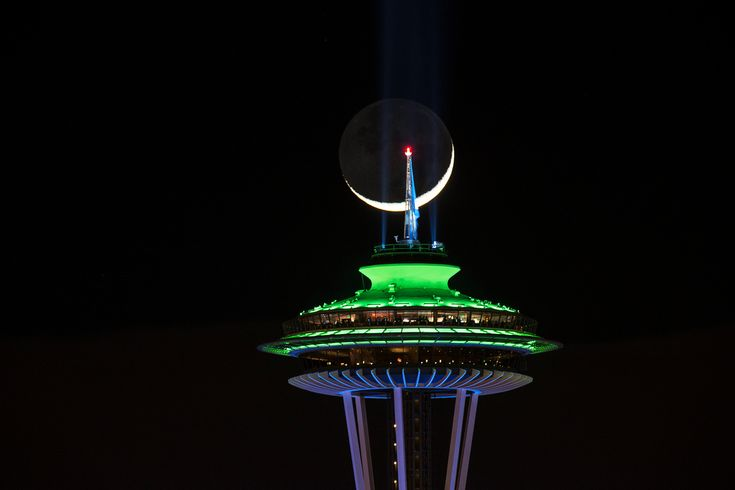 Seattle+needle+seahawk+colorful+designer - Google Search