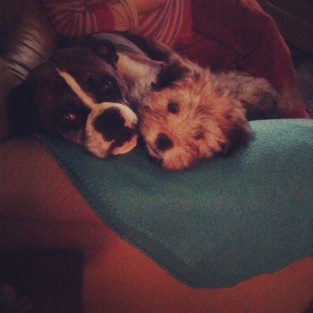 Fredy and Edward, amigos