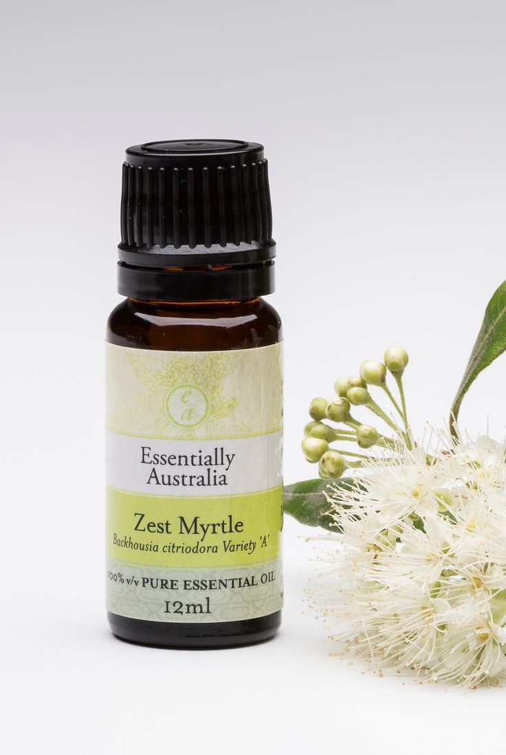 Zest Myrtle (Backhousia citriodora Variety 'A') our new essential oil released in December 2016. It is an invigorating, zesty lemon/citronalla aroma with lovley woody notes, very energising.   Go to https://essentiallyaustralia.com.au/shop/zest-myrtle-essential-oil/?v=322b26af01d5