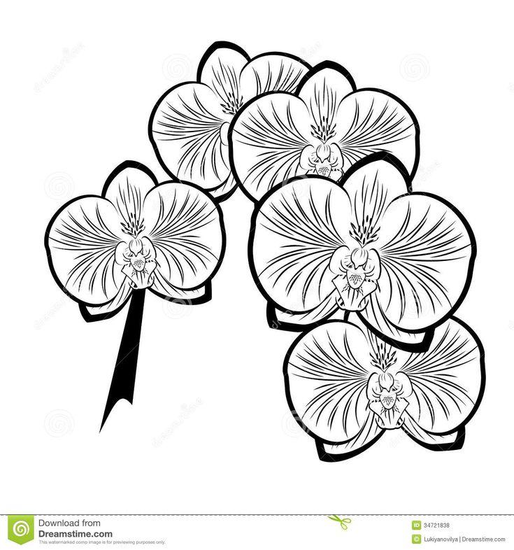 Assez Plus de 25 idées magnifiques dans la catégorie Dessin de fleur  UO21