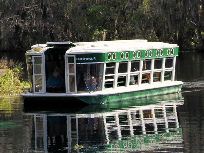 1. Experience Florida's oldest attraction at Silver Springs.