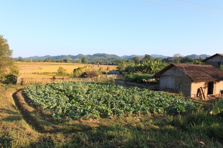 Village house, Hsipaw, Shan State, Myanmar
