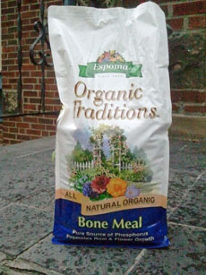 "Bone meal fertilizer is often used by organic gardeners to add phosphorus to garden soil. But those unfamiliar with it may wonder ""what is bone meal?"" and ""how to use bone meal on flowers?"" Learn more here."