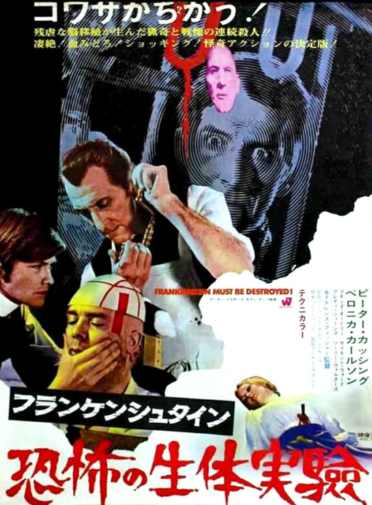 japanese horror movie posters 13 visions foreign horror