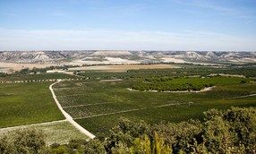 Abadía Retuerta | Duero Valley Winery | Wine Regions of Spain