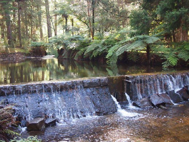 Melbourne WeekendNotes - Where's Melbourne's Best Bushwalks? - Melbourne