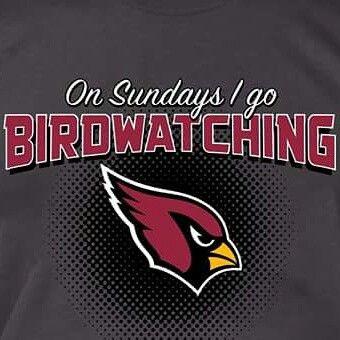 Arizona Cardinals Football #BirdGang #AZLadyBirds 2015