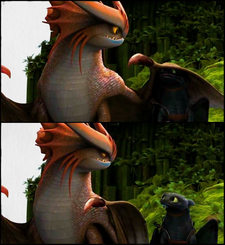 how to train your dragon funny and cute scenes