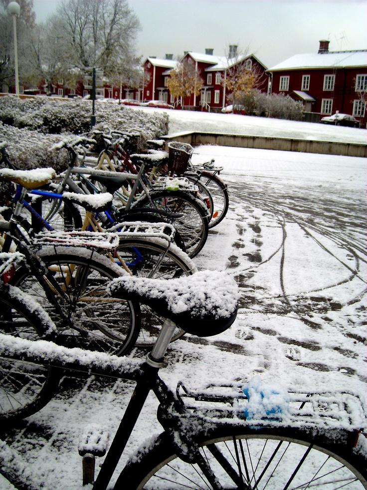 University of Vaasa winter...